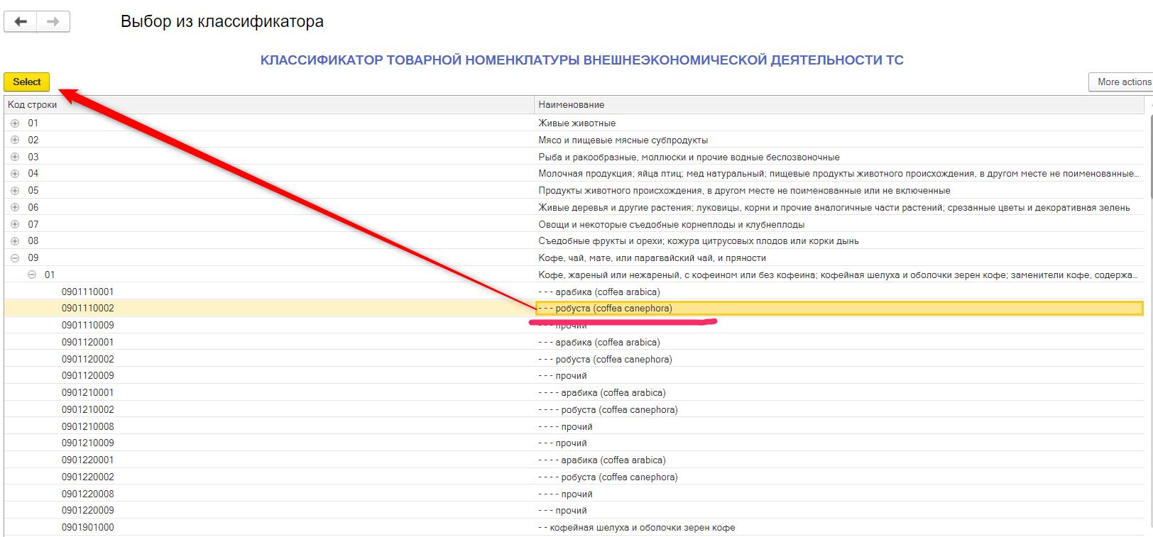 Заполнение кода ТНВЭД России